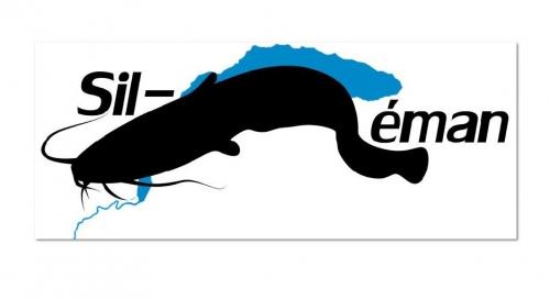 Enquête: Le Silure glane dans le bassin lémanique