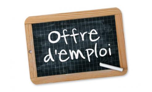 OFFRE d'EMPLOI : CDD 1 mois- Niveau  technicien