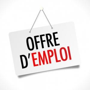 OFFRE D'EMPLOI : INGENIEUR d'ETUDE en informatique  CDD 6 mois 2020