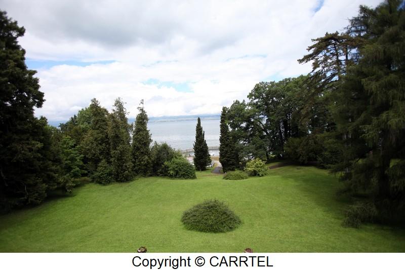 view carrtel park