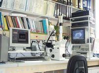 Microscopes inversés avec systèmes d'acquisition d'images