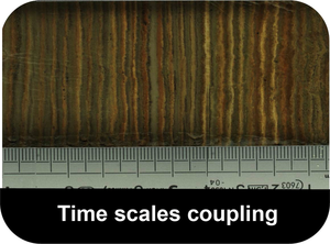 Time-Scale-Coupling-Button