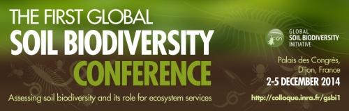 Global soil Biodiversity