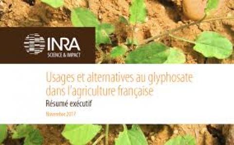 Usages et alternatives au glyphosate dans l'agriculture française